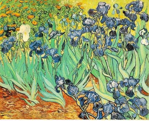 Iris Van Gogh.jpg