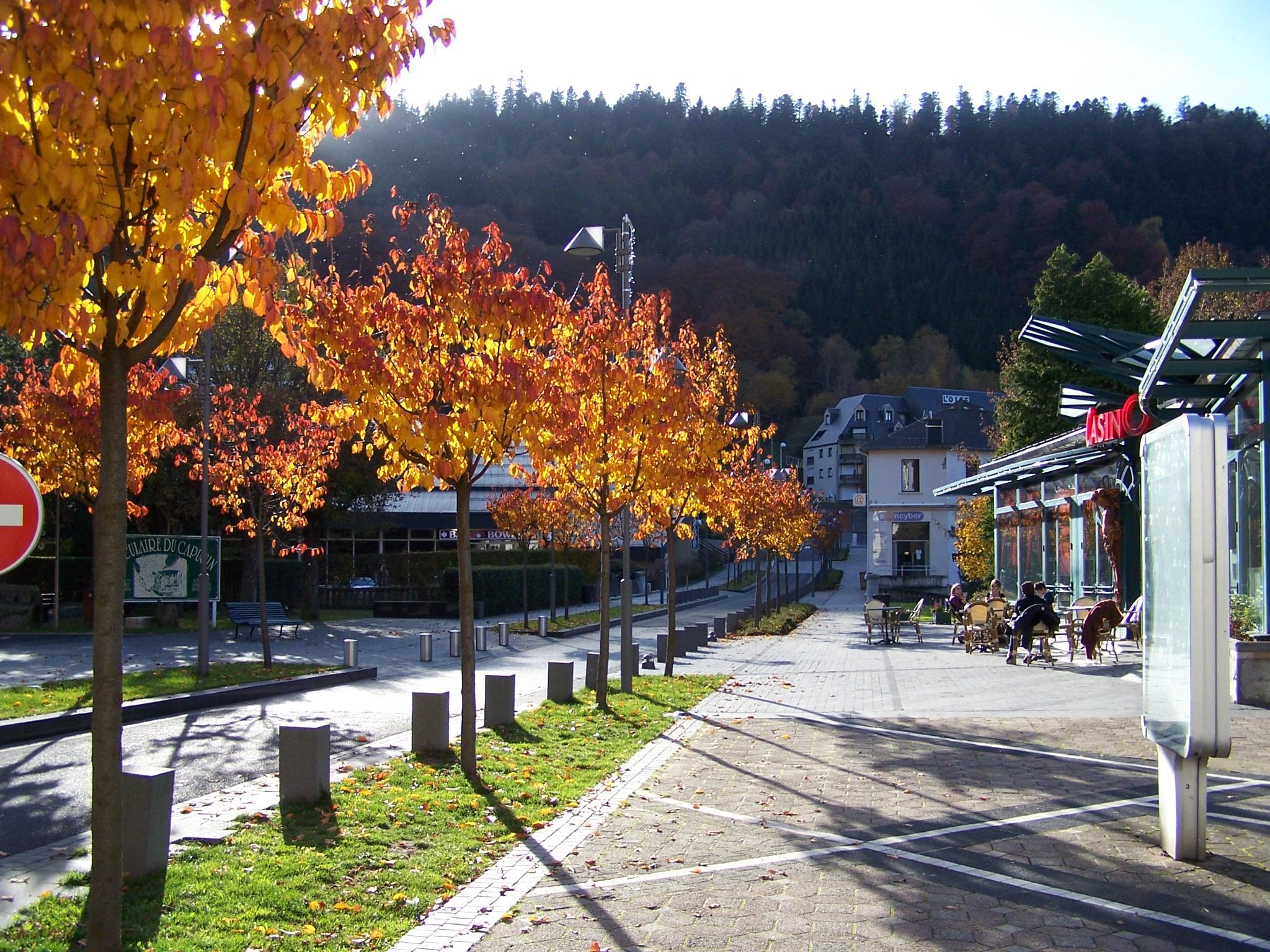 29-10-2009-Halle-Place République-Allée Georges Lagaye 059.jpg