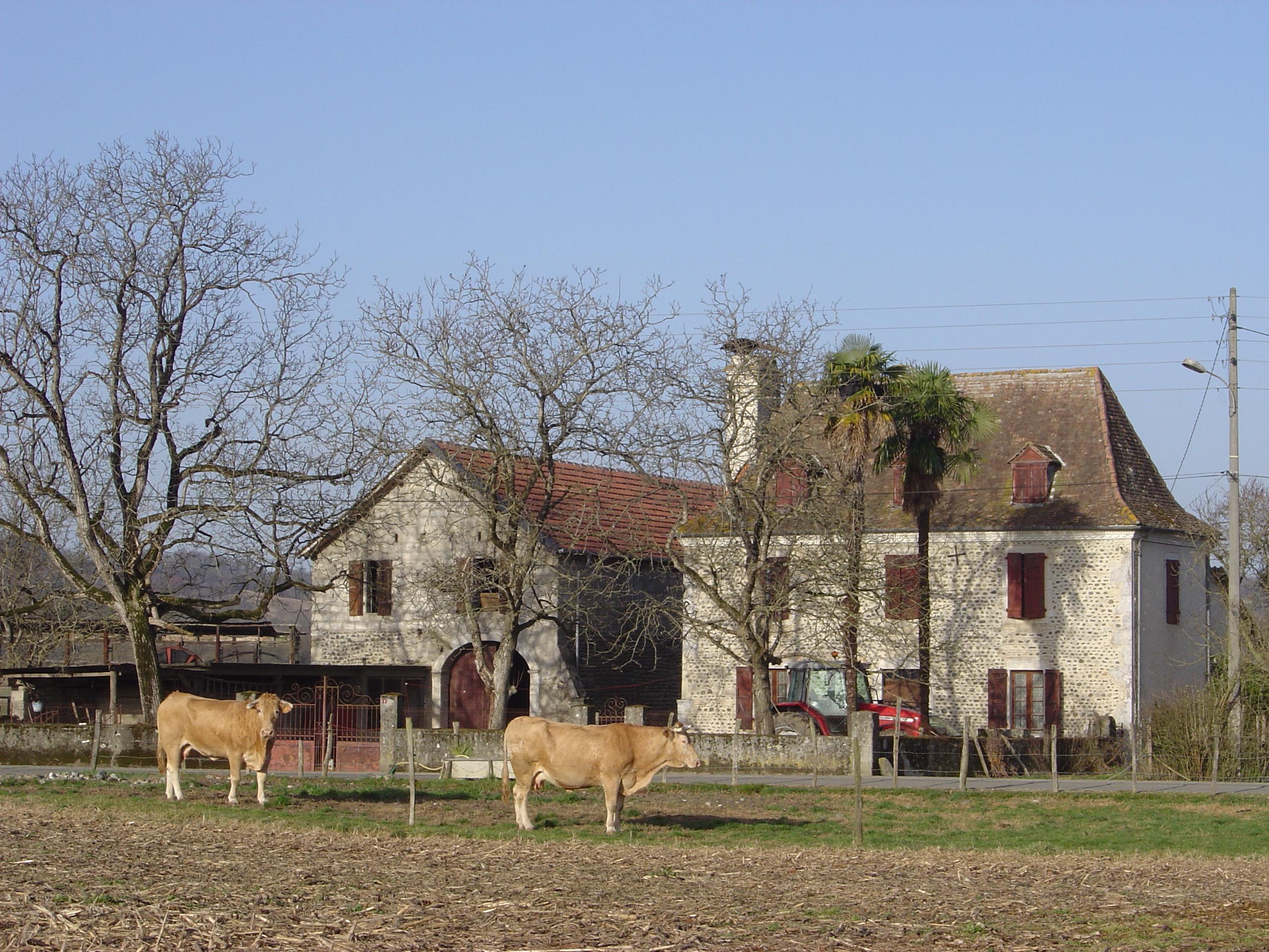maison béarnaise 3.jpg