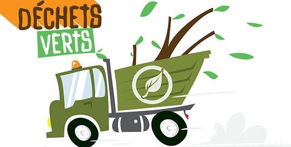 dechets-verts-vignette v2.jpg