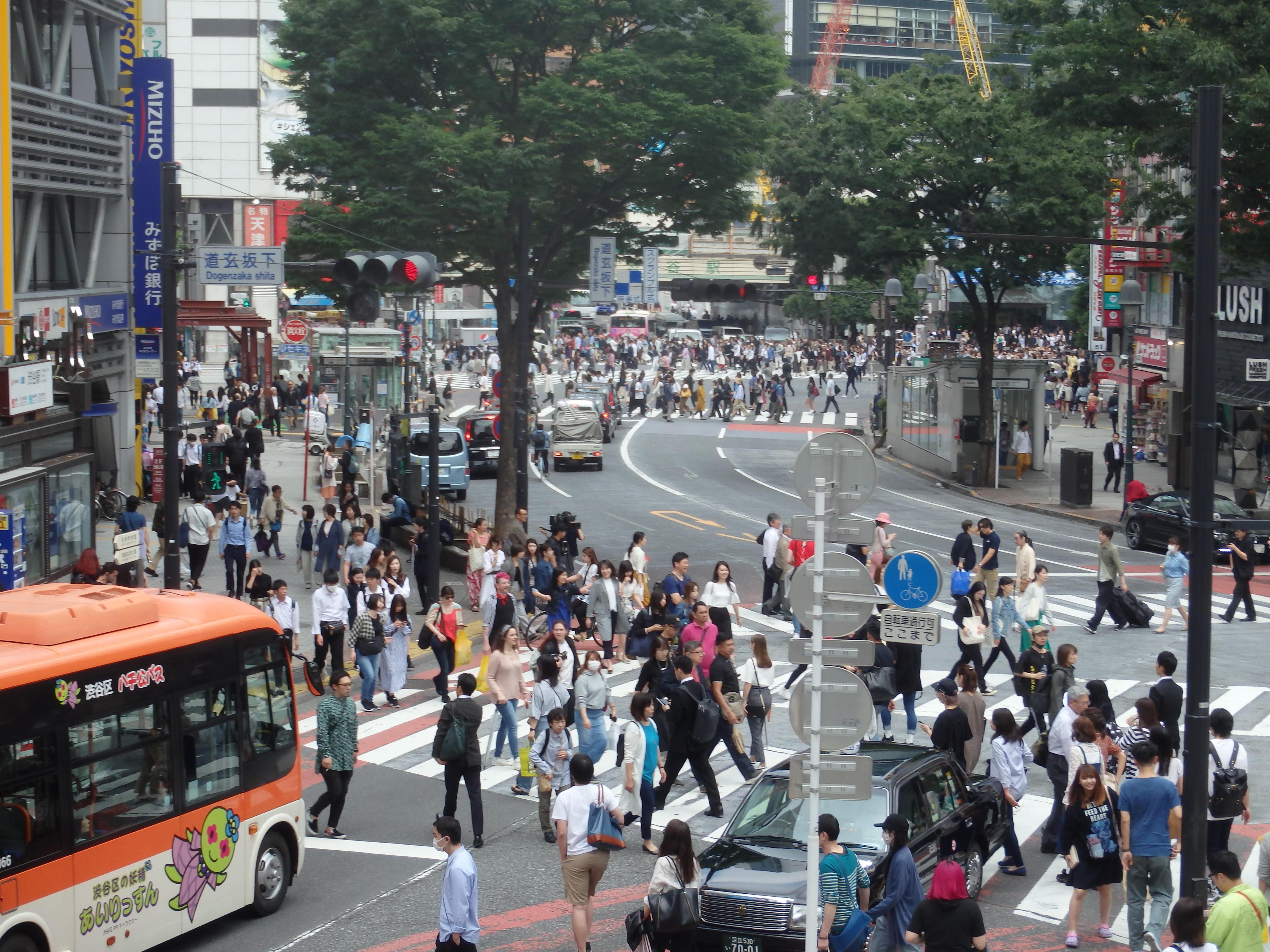 Japon 2019 _1_.JPG