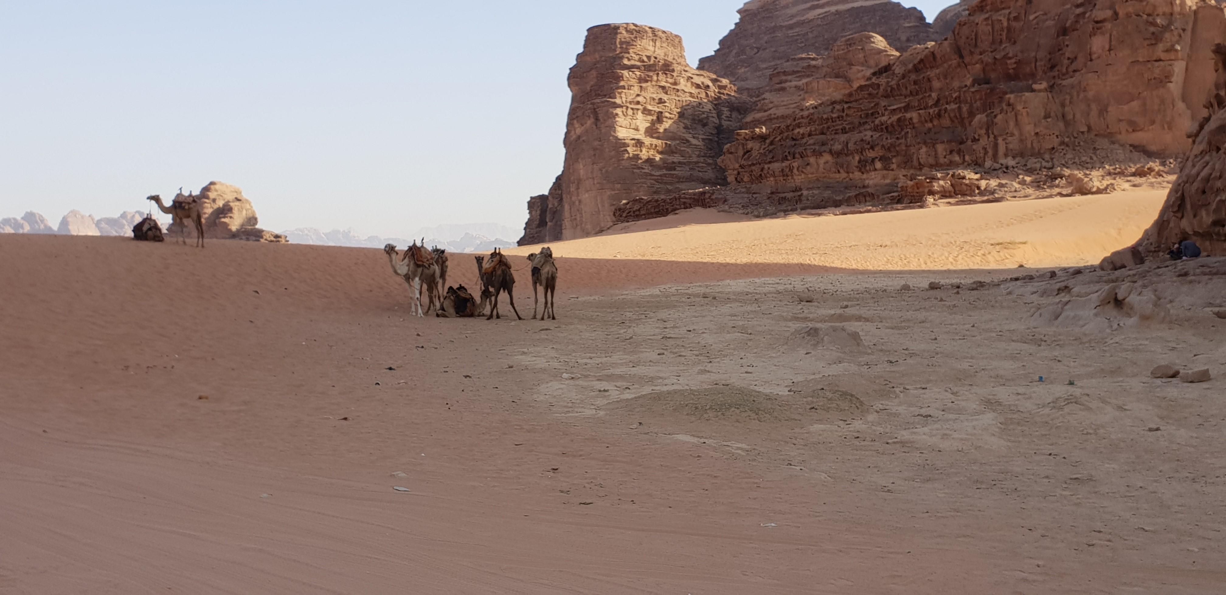 jordanie _4_.jpg