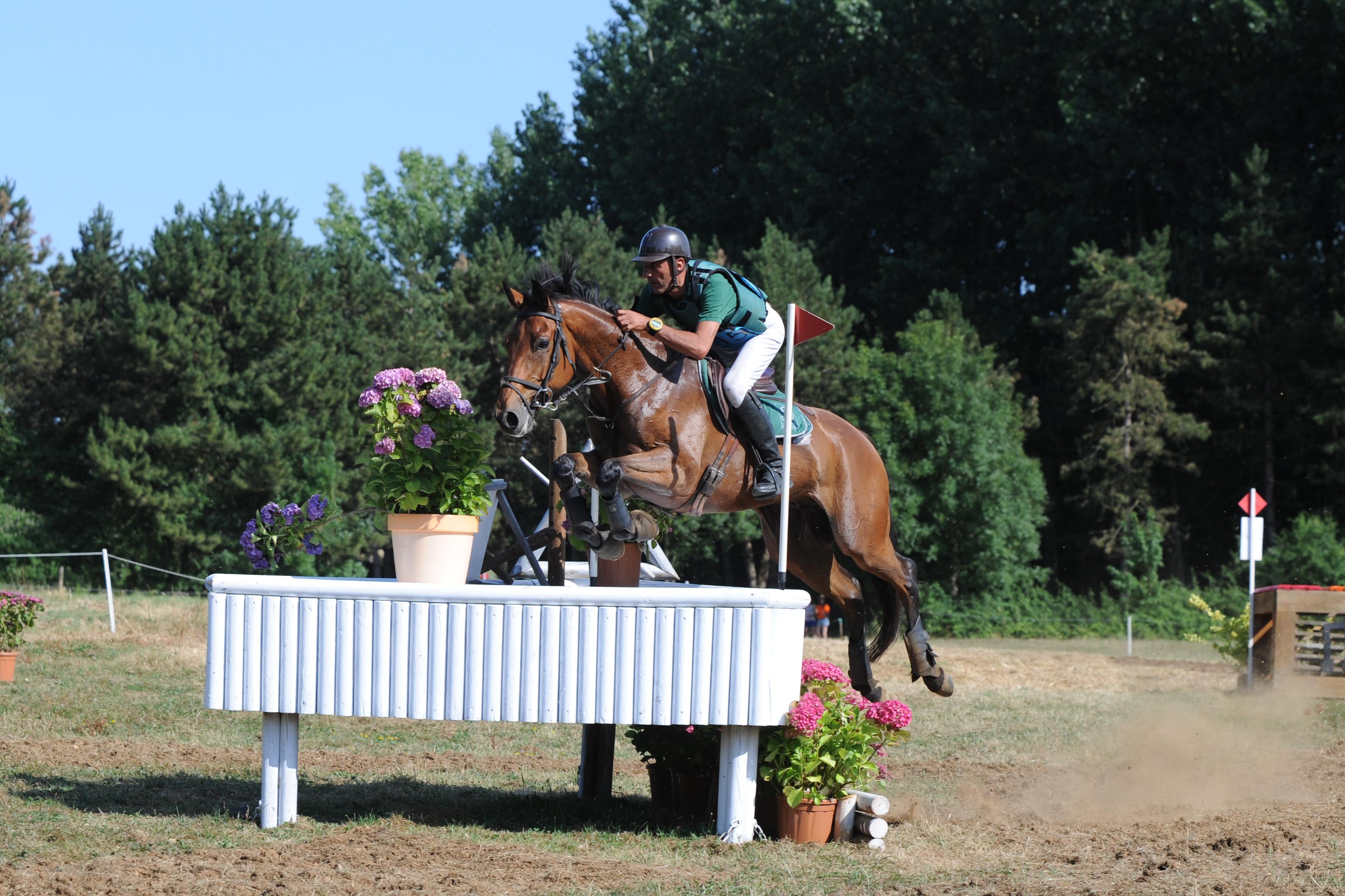 Compétition Équestre Vendée - CEV