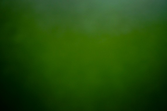 Chab'Green
