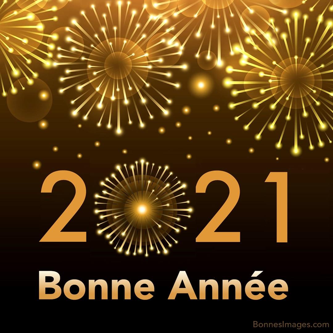 bonne-annee_076c.jpg