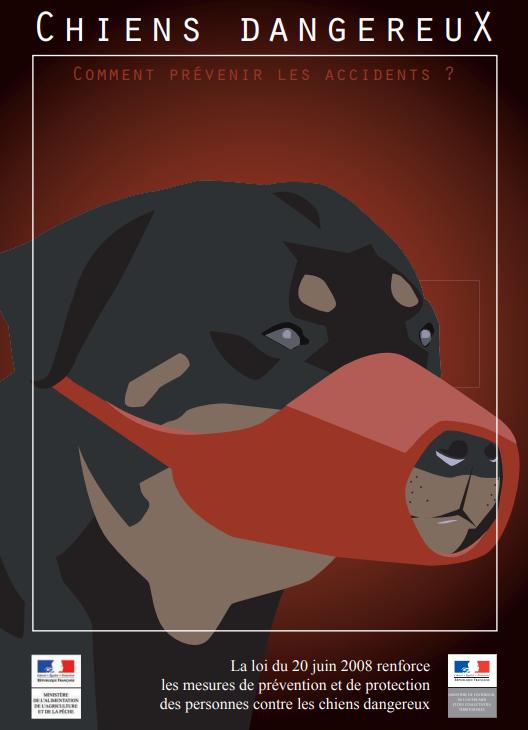 Permis-chiens.PNG
