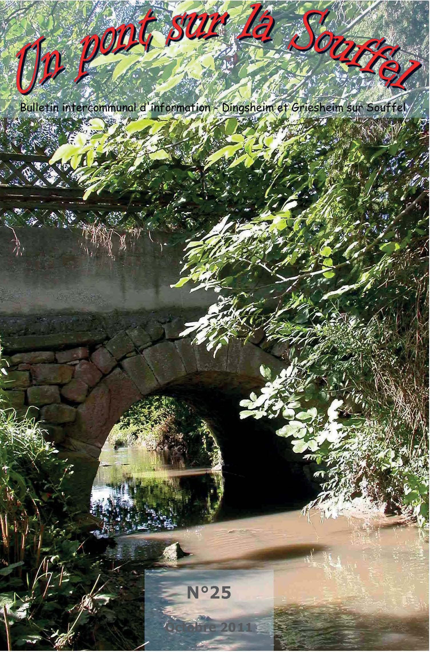 N°25 - Un Pont sur la Souffel - Octobre 2011