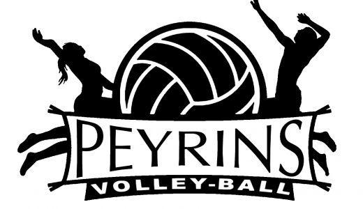 Logo volley.jpg