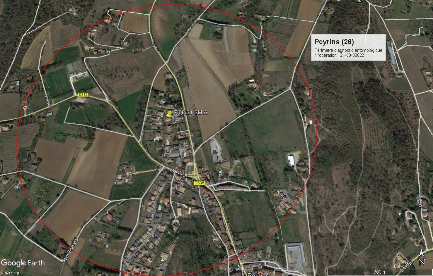 Peyrins_périmètre diagnostic entomologique_235 route de marges _opération 21-08-03622.jpg