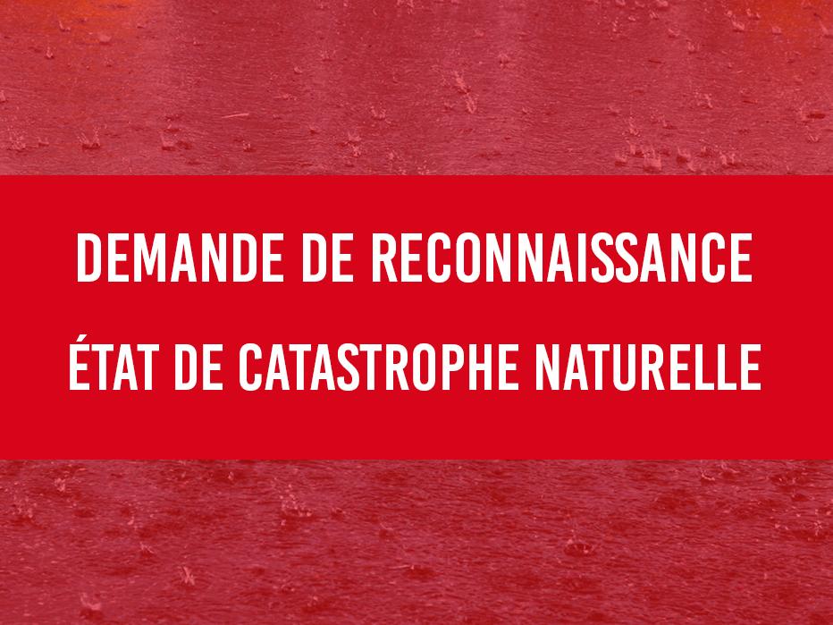 catastrophenaturelleinondation.jpg