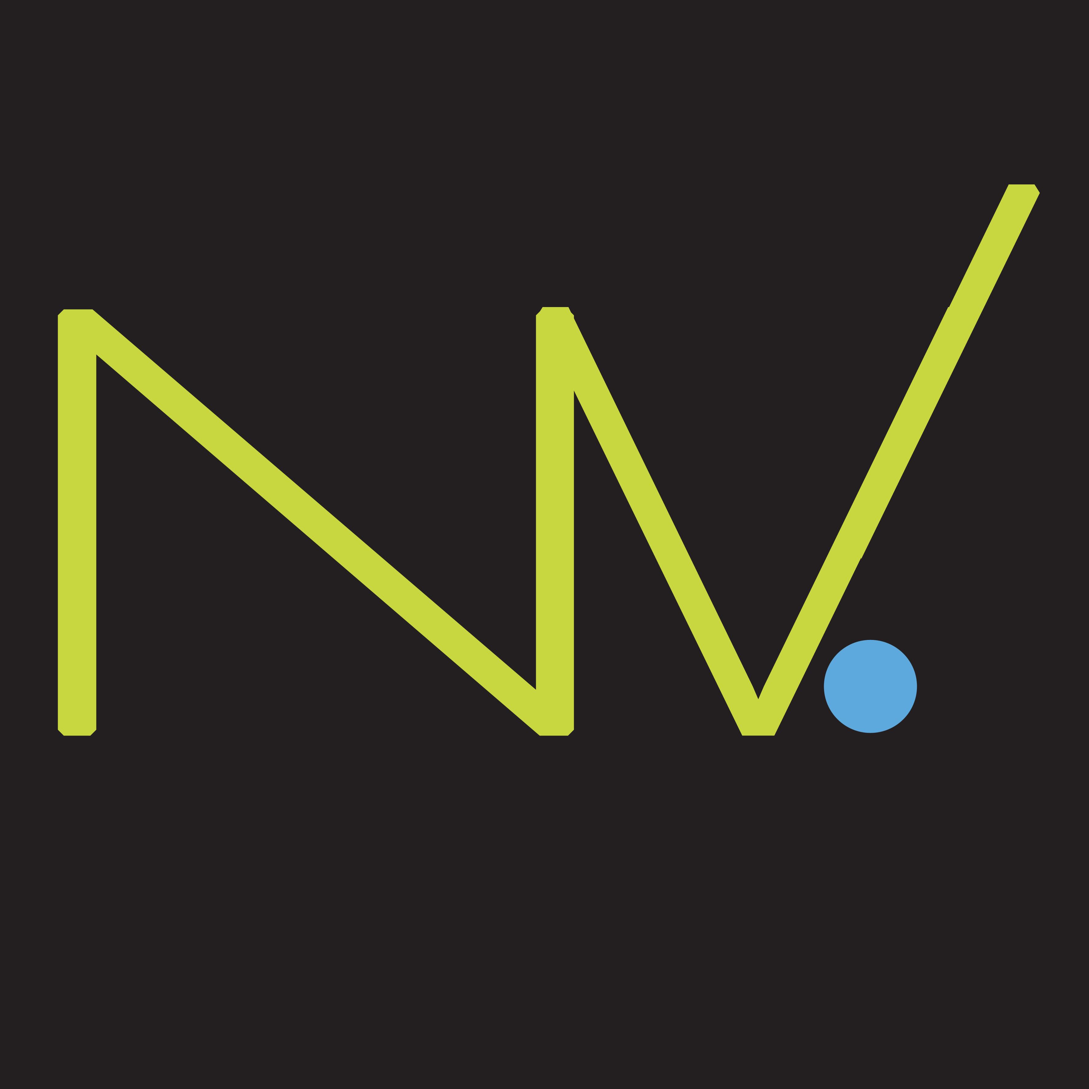 Nouveau logo Nettement Vous 2bis.jpg