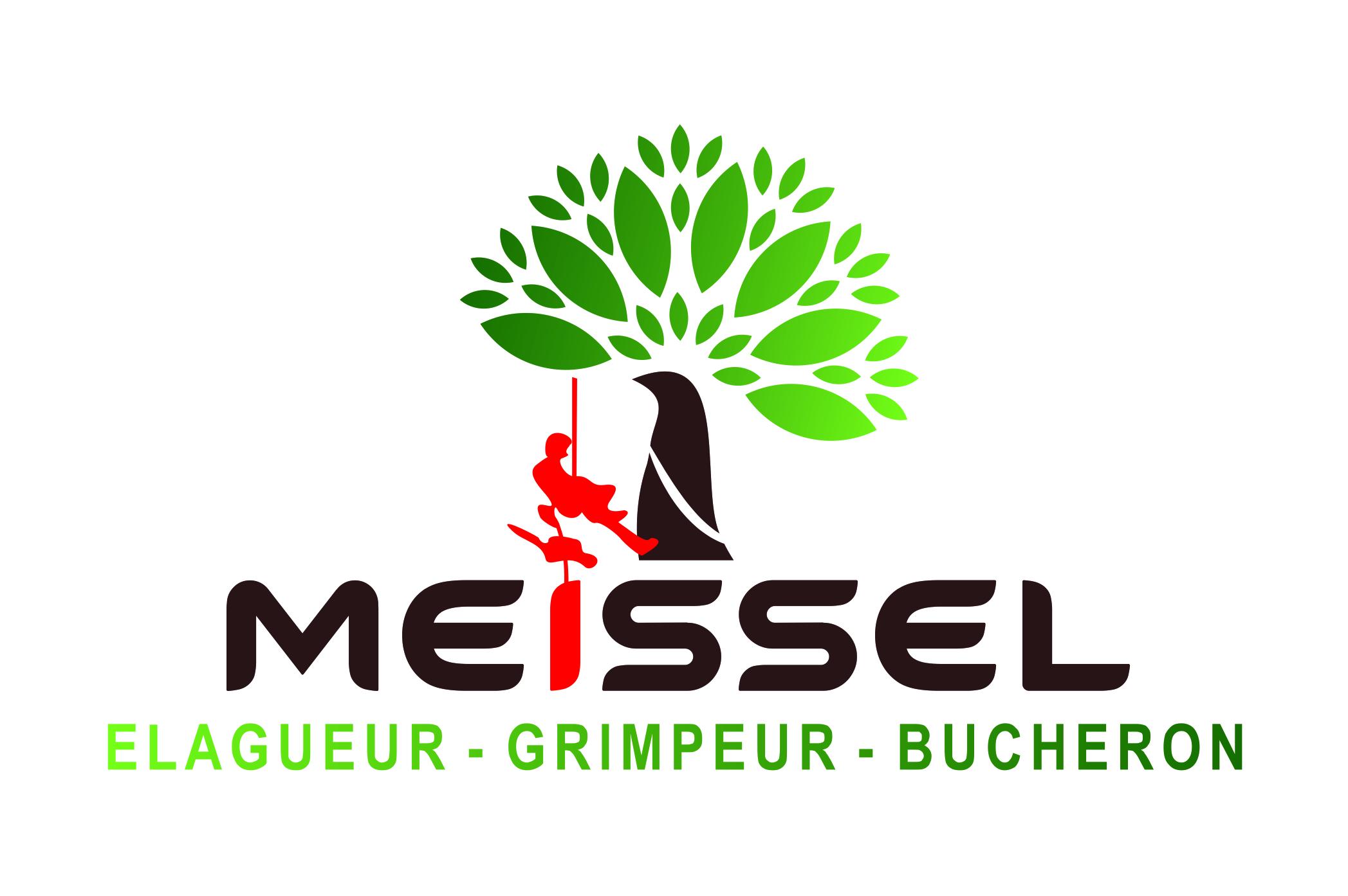 MEISSEL logo.jpg