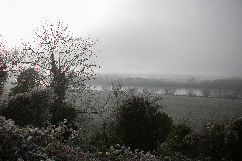 Paysage CSS vers la Seine 1er janvier 21-1- mise sur le site le 3 janv.jpg