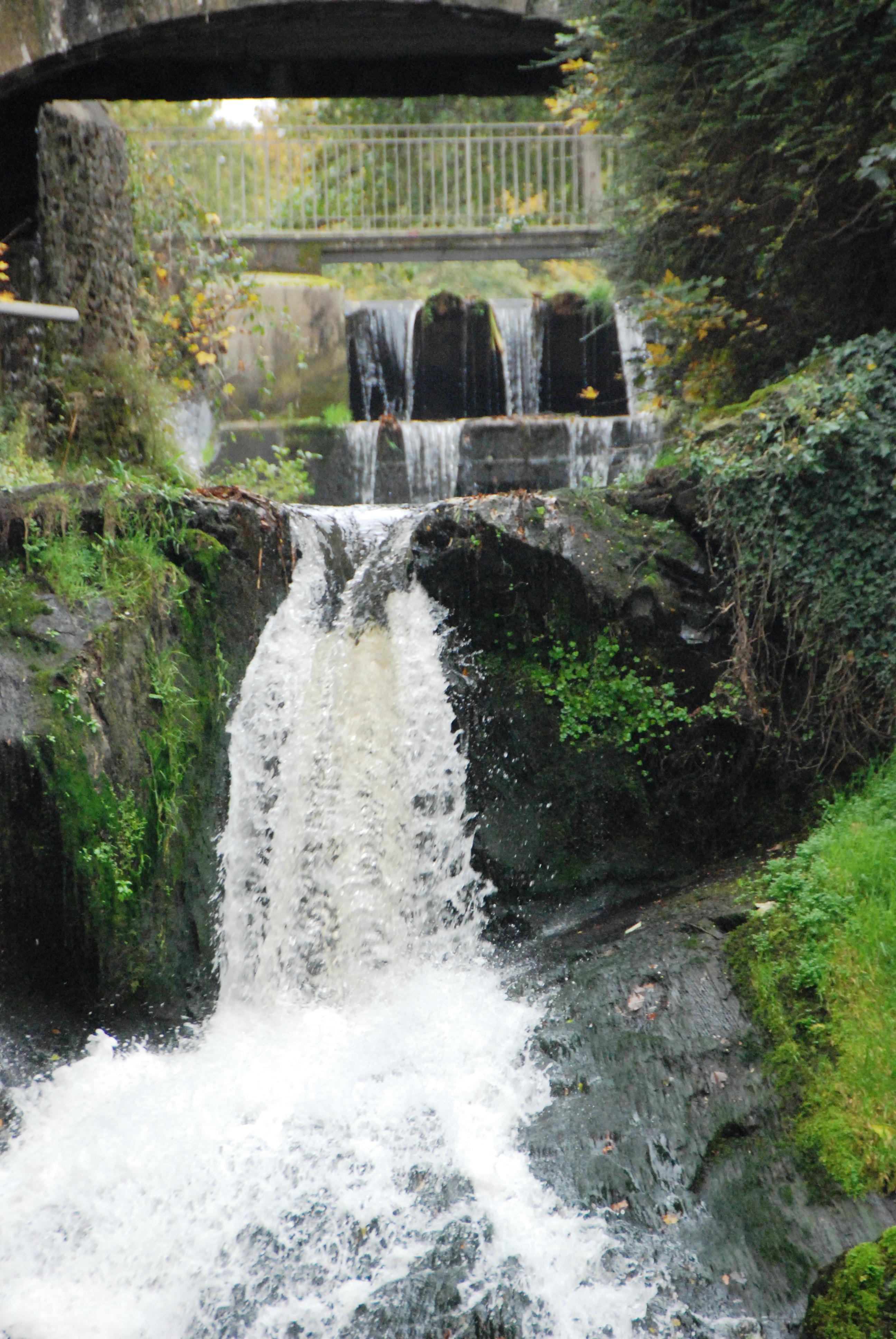 étang et cascade Châté _33_.JPG