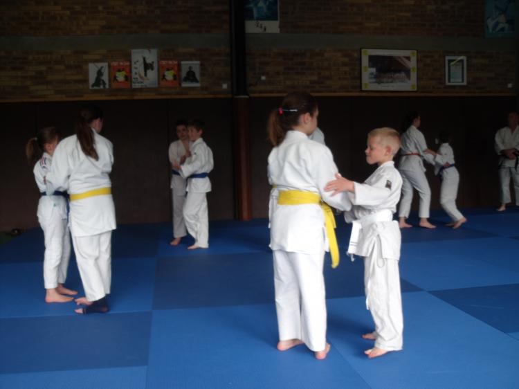 Judo sur le tatami