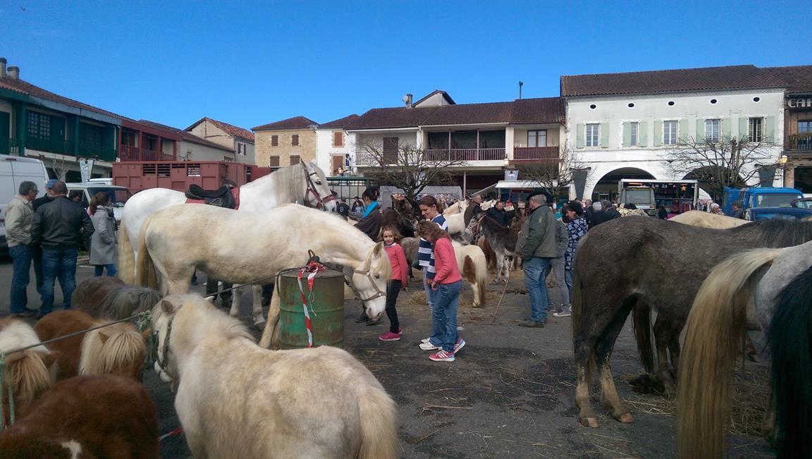 17-03 foire aux chevaux.jpg