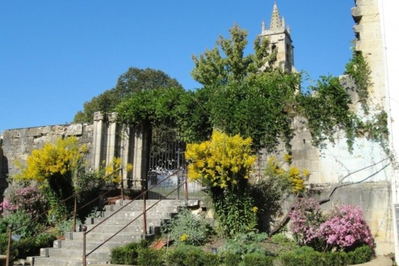 le jardin de Marie.jpg