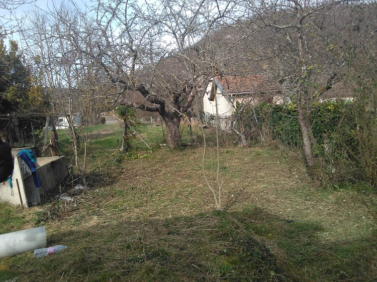 Jardin partagé _1_.jpg
