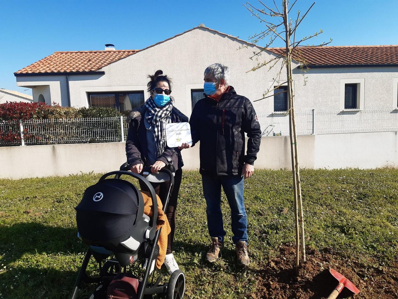 un arbre une vie8.jpg