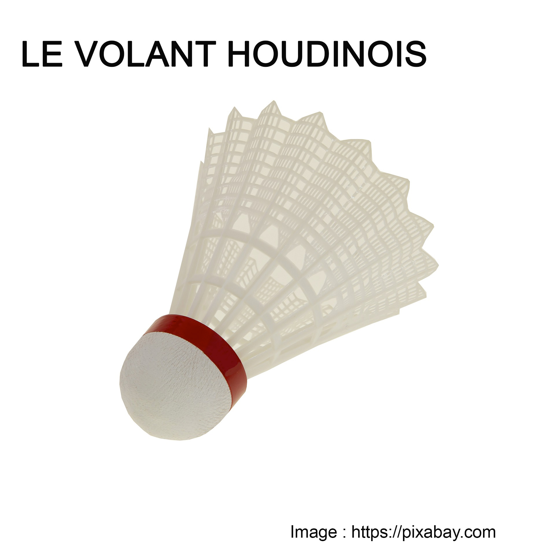 Volant-Houdinois.jpg