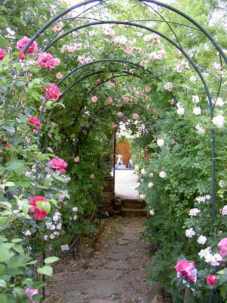 Jardin de Valsaintes 2.jpg