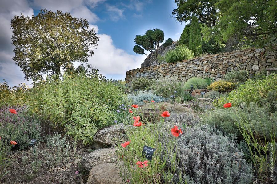 Jardin de Valsaintes 15.jpg