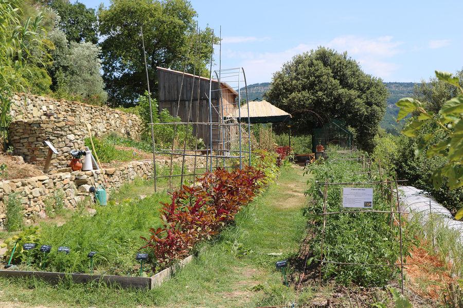 Jardin de Valsaintes 5.jpg