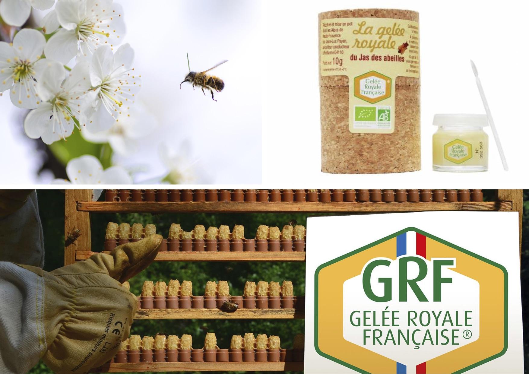 Le jas des abeilles.jpg
