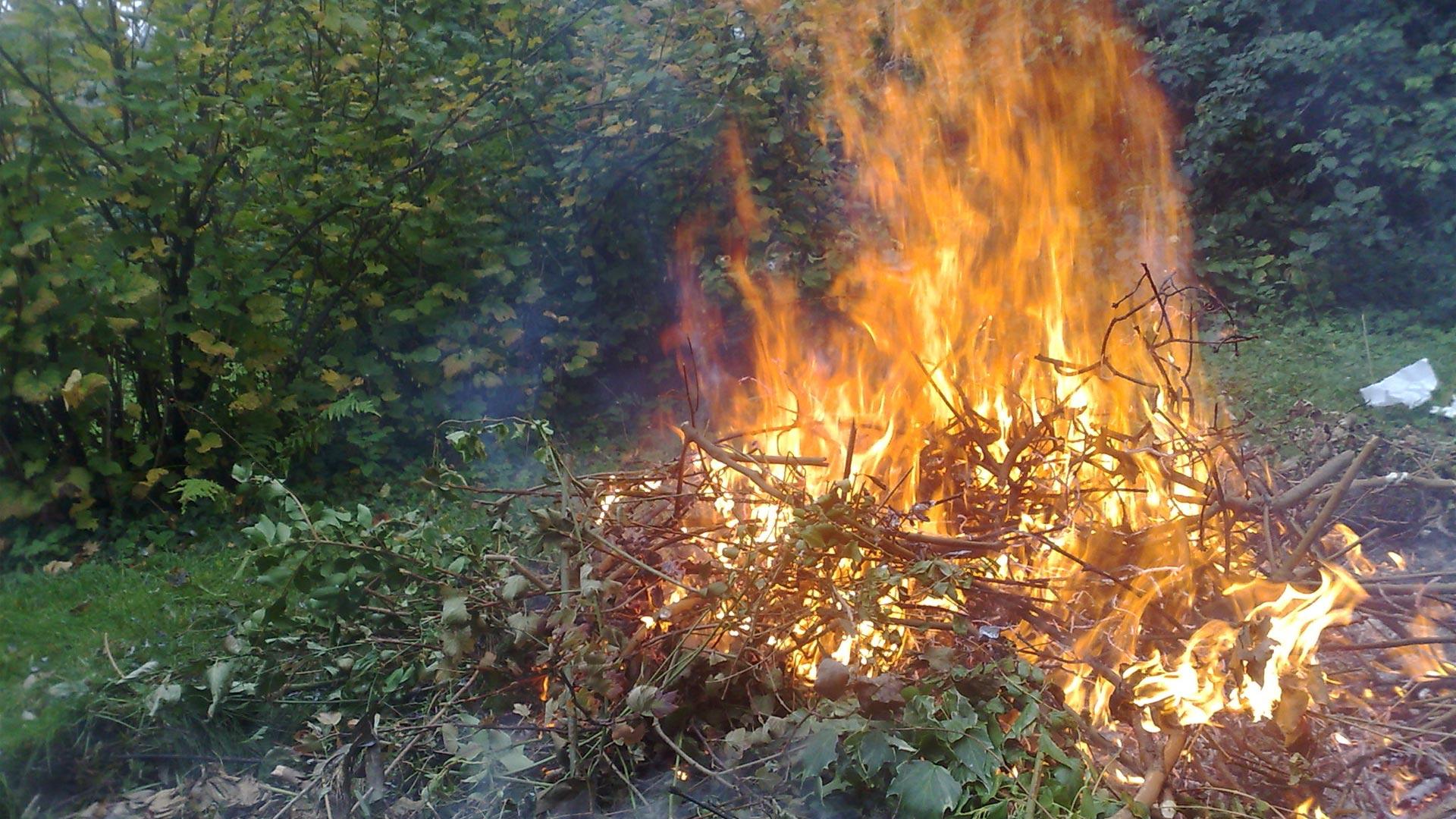 thumbnail-emploi-du-feu.jpg
