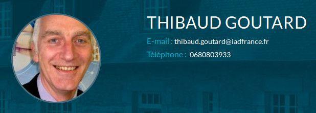 Thibault Goutard.jpg