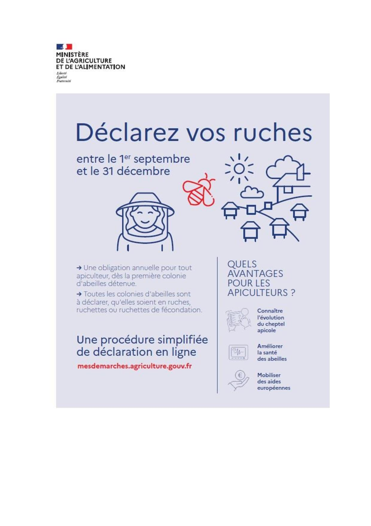déclarer vos ruches-page-001.jpg