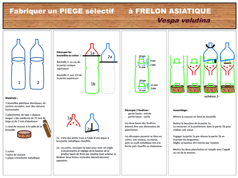 2Piege-frelon-03-19-1.jpg