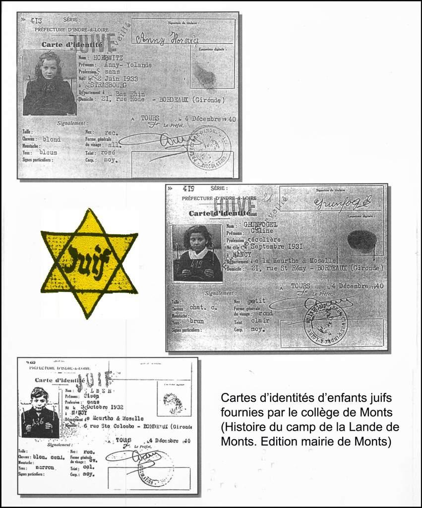 ob_1dd8dc_fiches-identites-juives-2.jpg