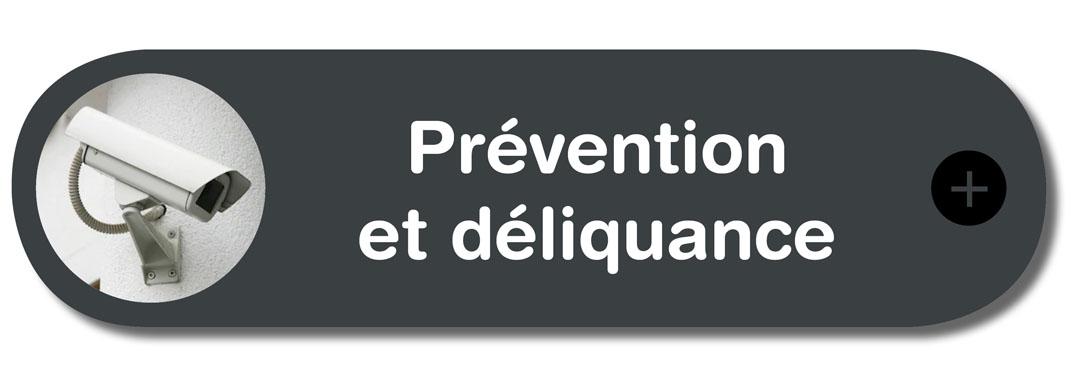 prévention déliquance.jpg