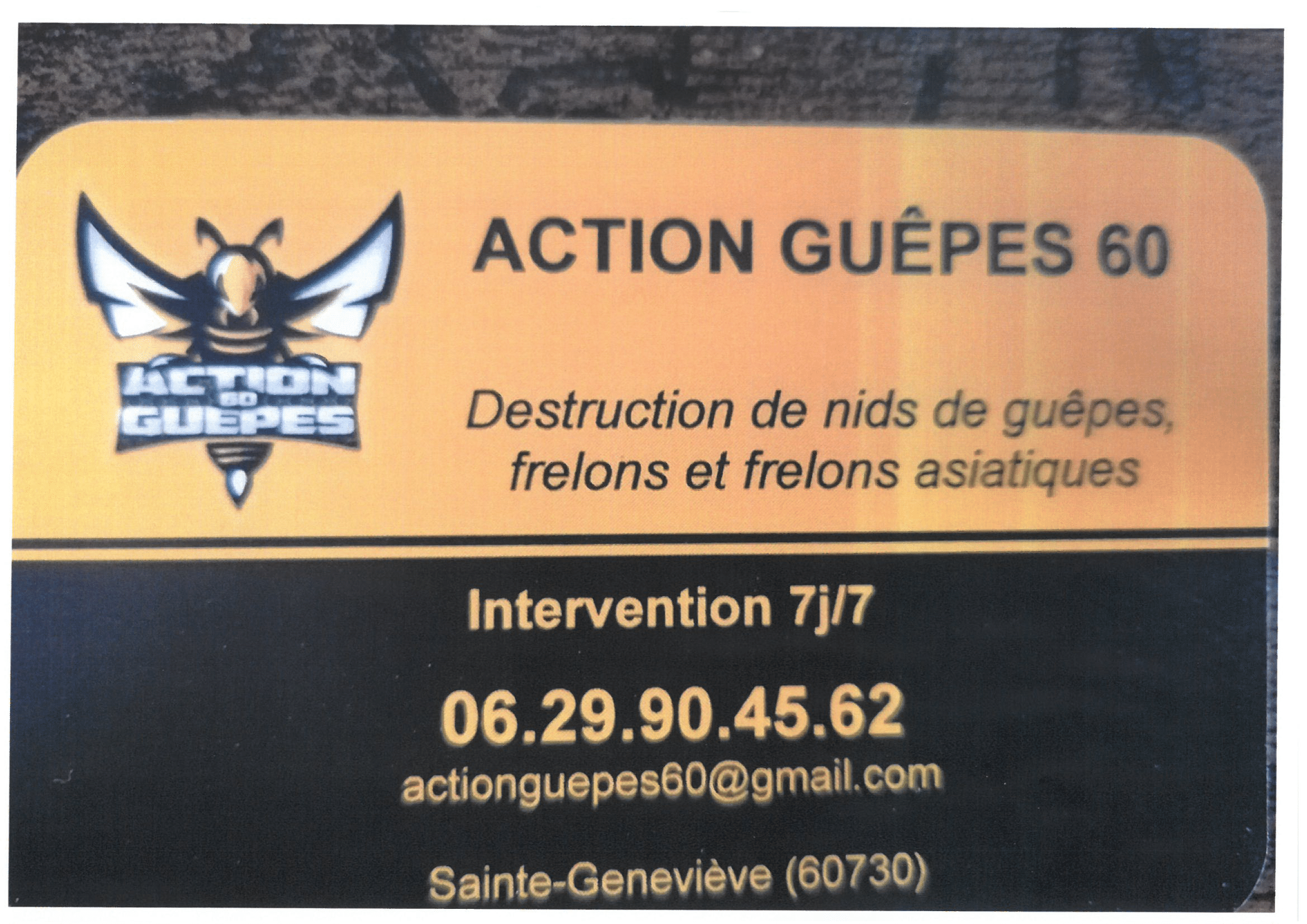 ACTION GUEPES 60-1.png