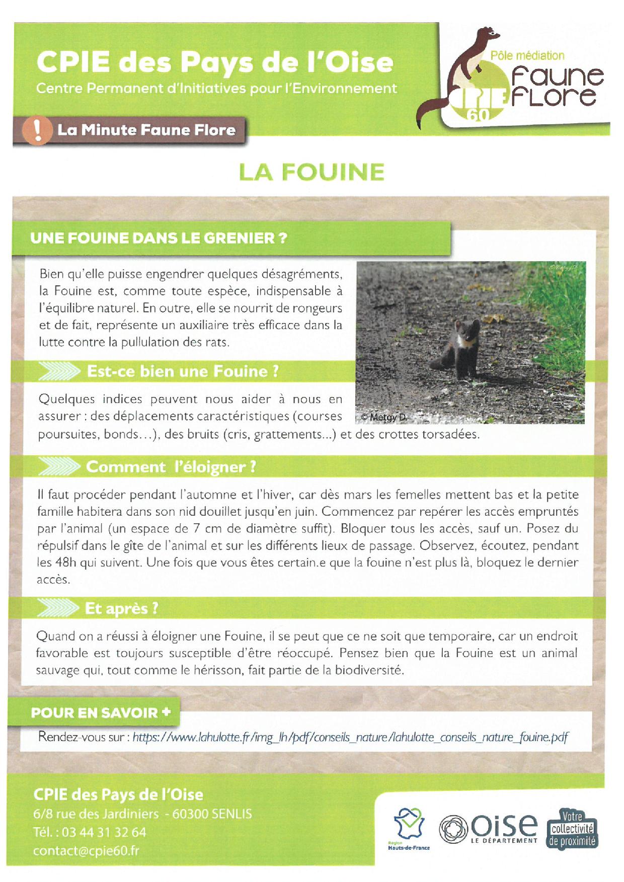 LA FOUINE.png