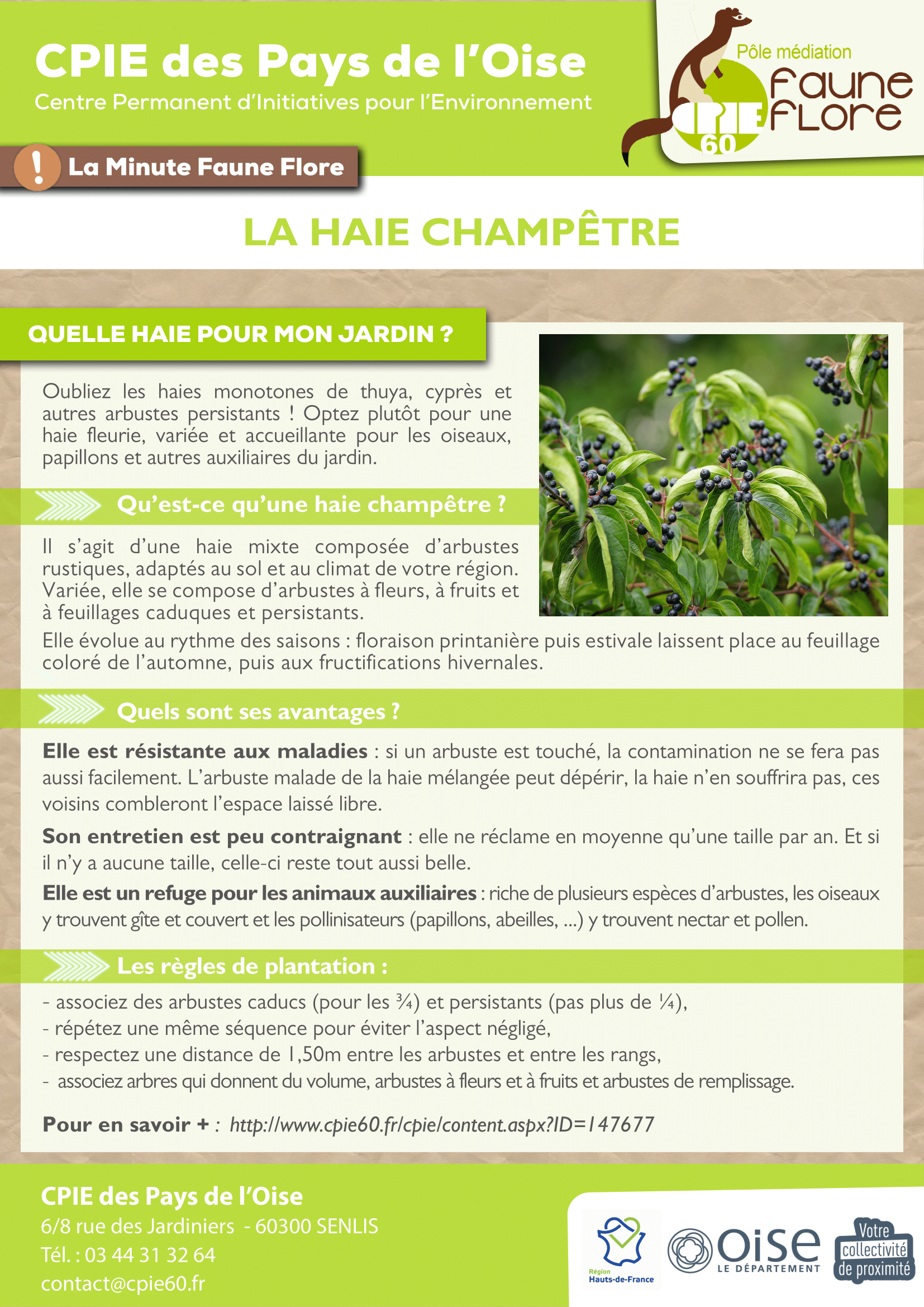 _2021_ Fiche MFF -10- Haie-1.png