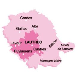 Ail rose de Lautrec - Carte.jpg