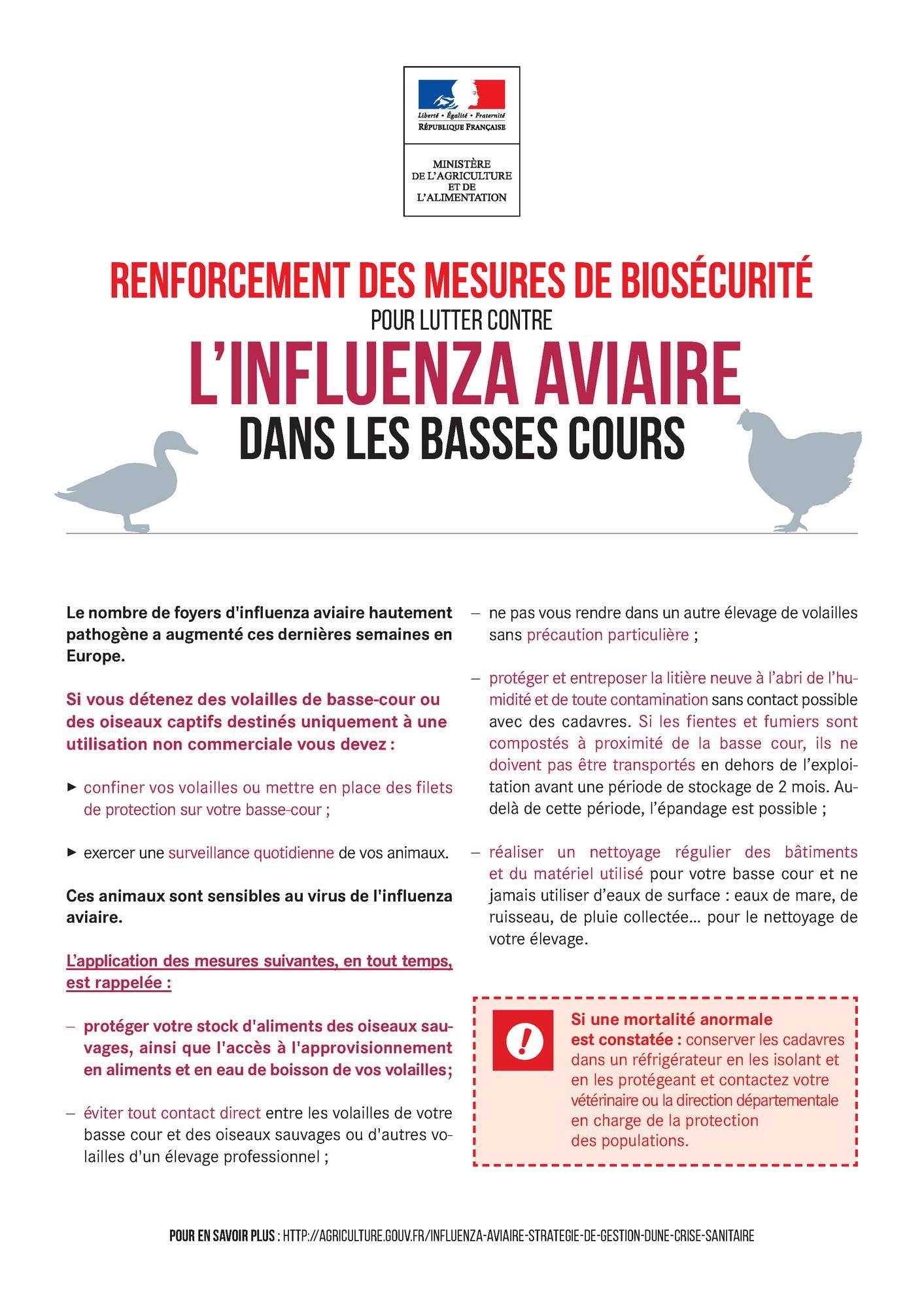Influenza Aviaire - Renforcement de la biosécurité dans les basses cours 1.jpg