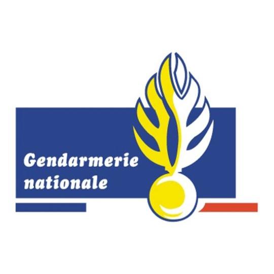 Logo Gendarmerie nationale.jpg