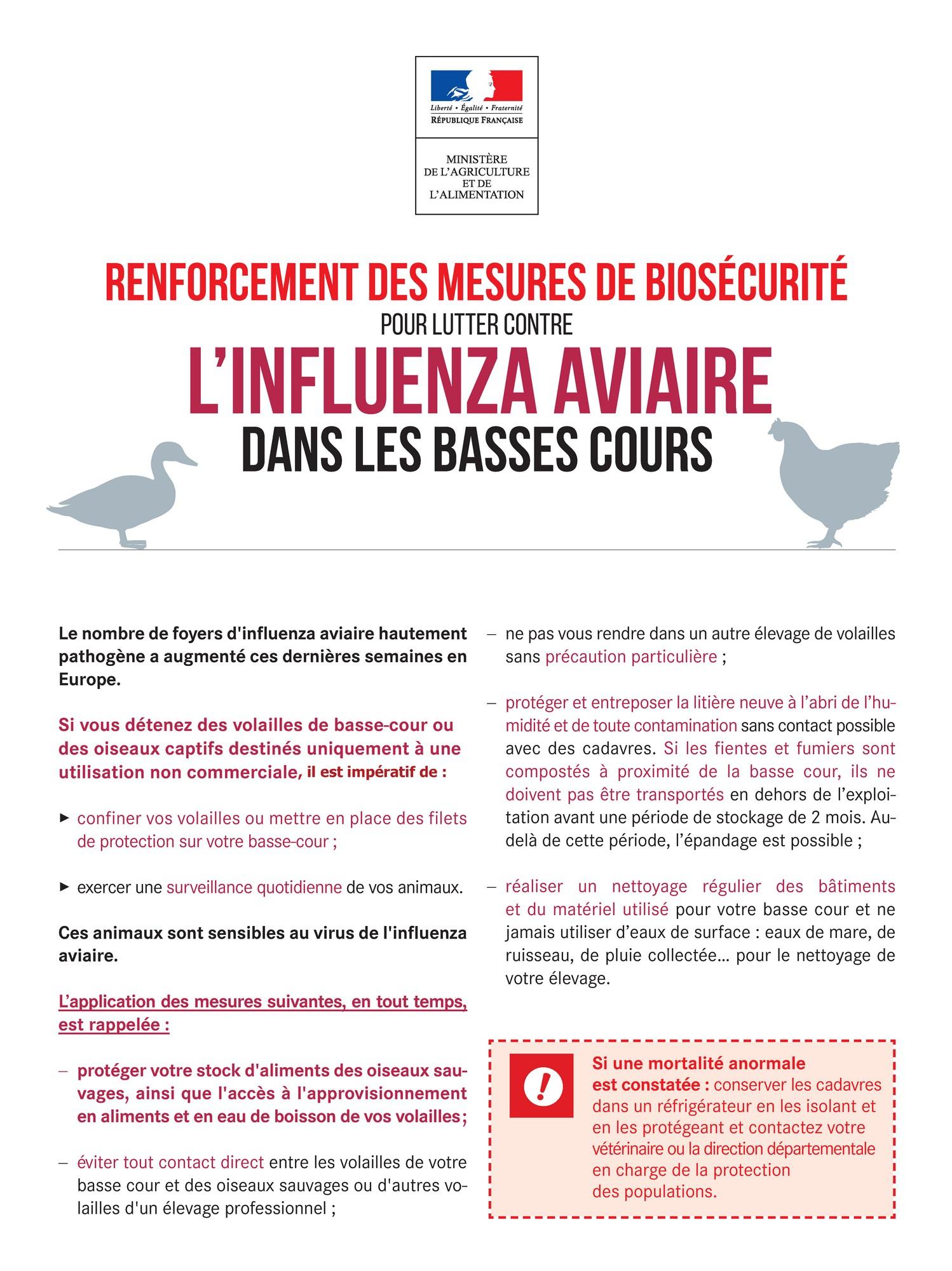 Influenza Aviaire - Renforcement de la biosécurité dans les basses cours 2.jpg