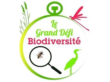 """Logo Association """"Protégeons l'environnement et les paysages ruraux Fréjevillois"""""""