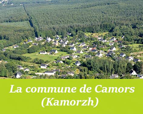 commune de camors.png