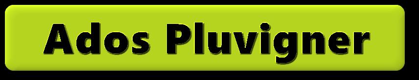 Ados pluvigner bouton.png