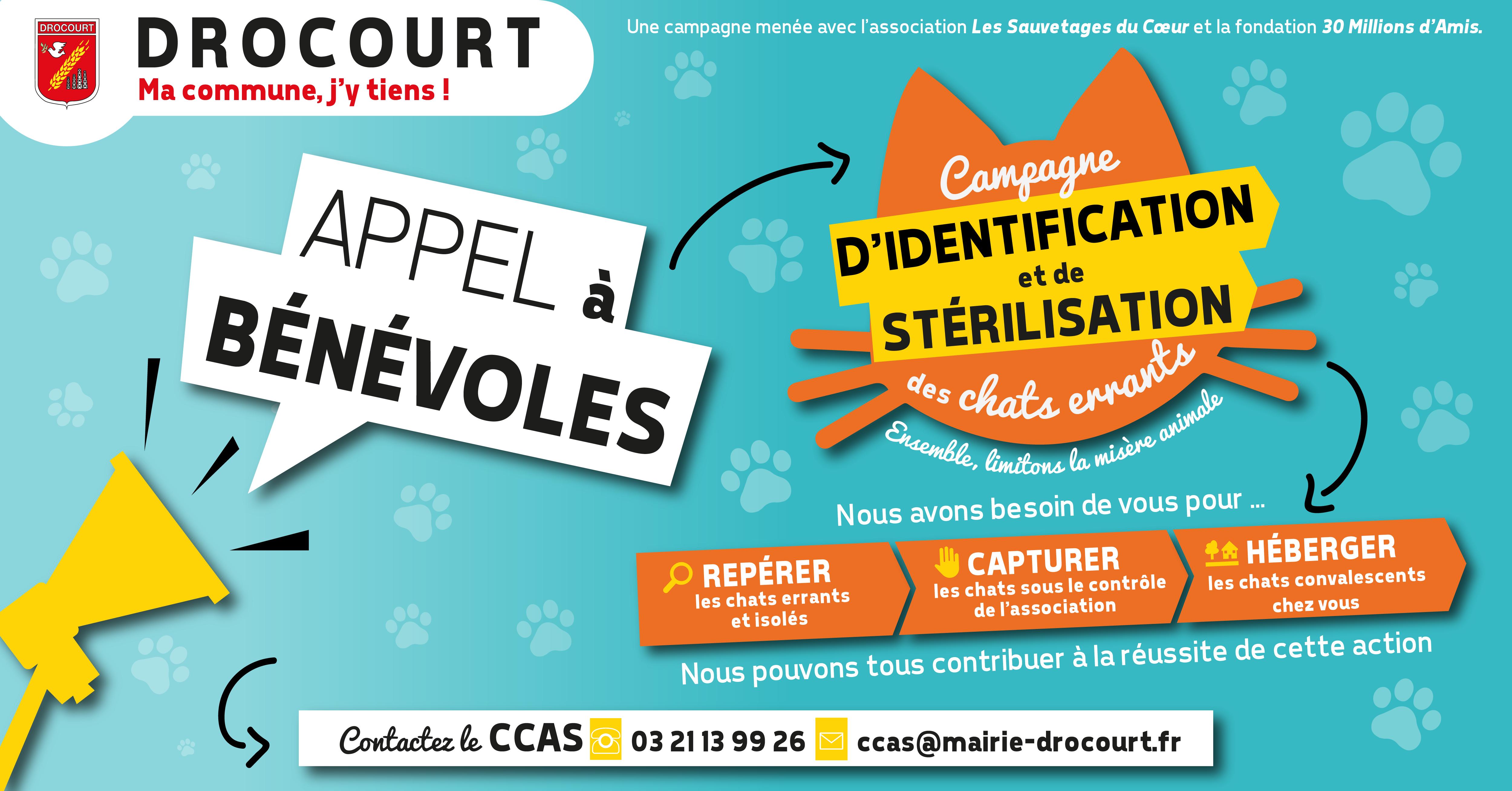 campagne_chat_bénévole_facebook.png