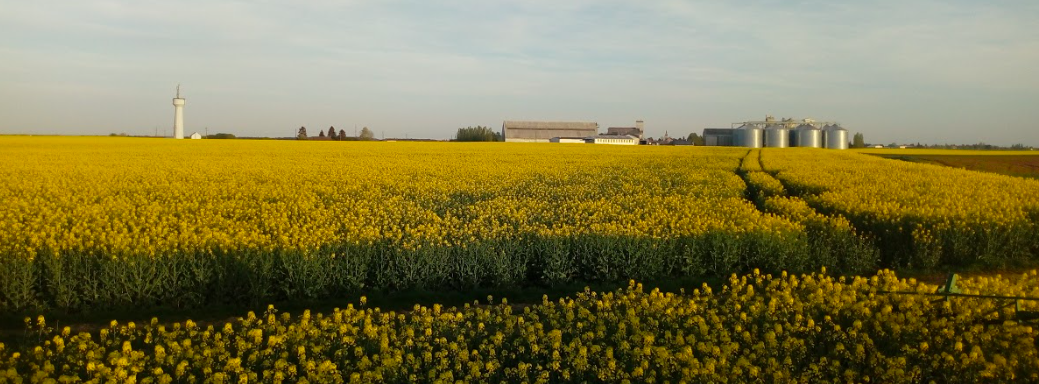 Commune d'Epieds-en-Beauce