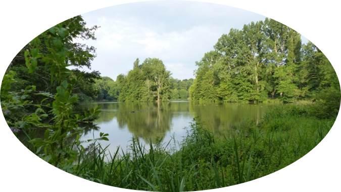 Lac du Lambon 06.jpg