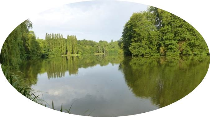 Lac du Lambon 01.jpg