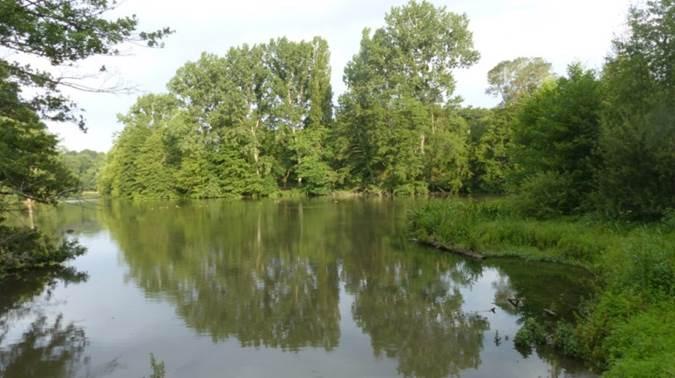 Lac du Lambon 1.jpg