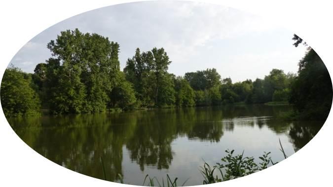 Lac du Lambon 02.jpg